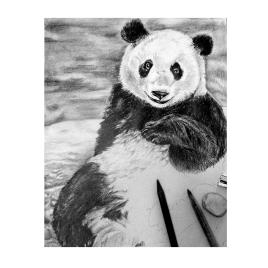 Panda_JulieBesner_web